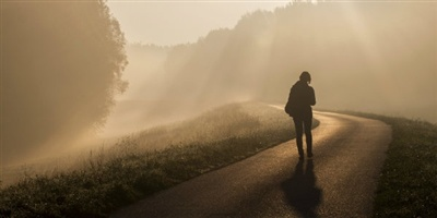 11350-fog-mist-walking-journey-path.400w.tn.jpg