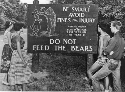Bear-Warning-Sign-Entrance-.jpg